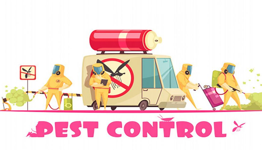 تنظيف مكافحة الحشرات